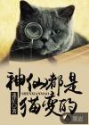 神仙都是猫变的